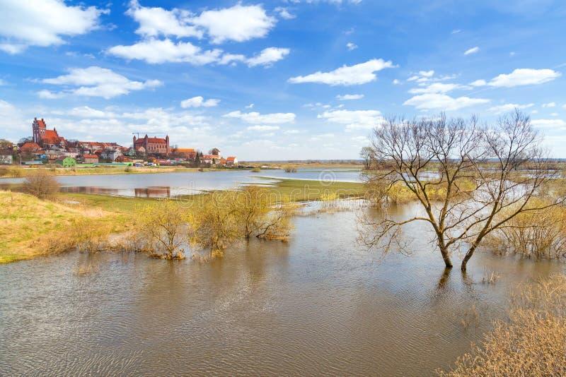 有条顿人城堡的Gniew镇在Wierzyca河 免版税库存照片