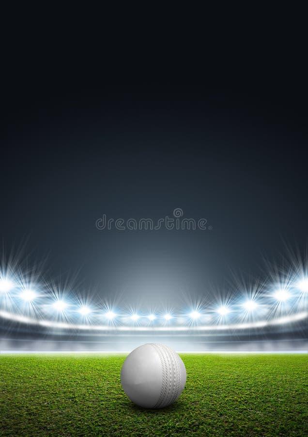 有板球的普通探照灯照明的体育场 库存例证