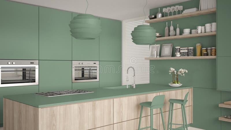 有架子的现代绿色和木厨房和内阁,有凳子的海岛 当代客厅,最低纲领派建筑学 库存例证