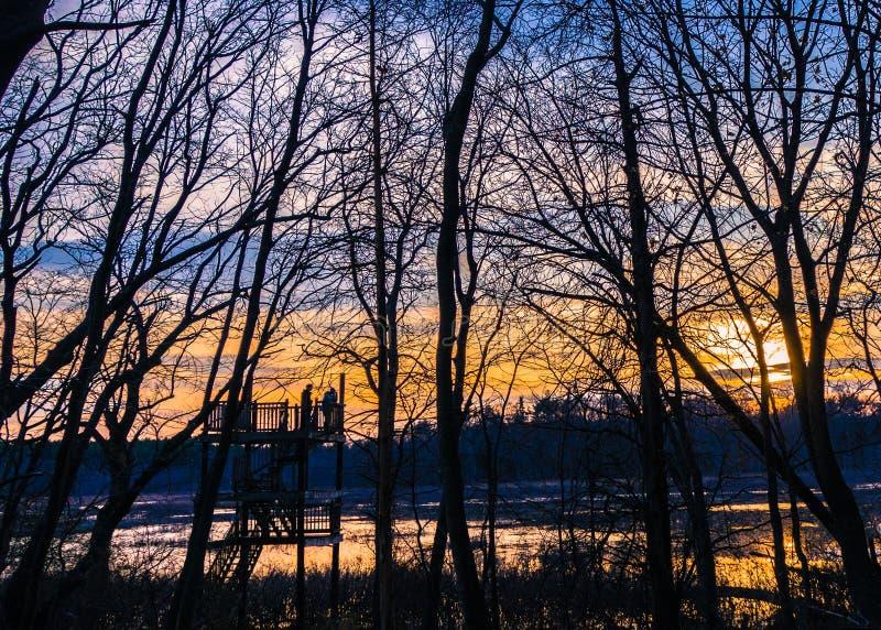 有树的观测台在日落 图库摄影