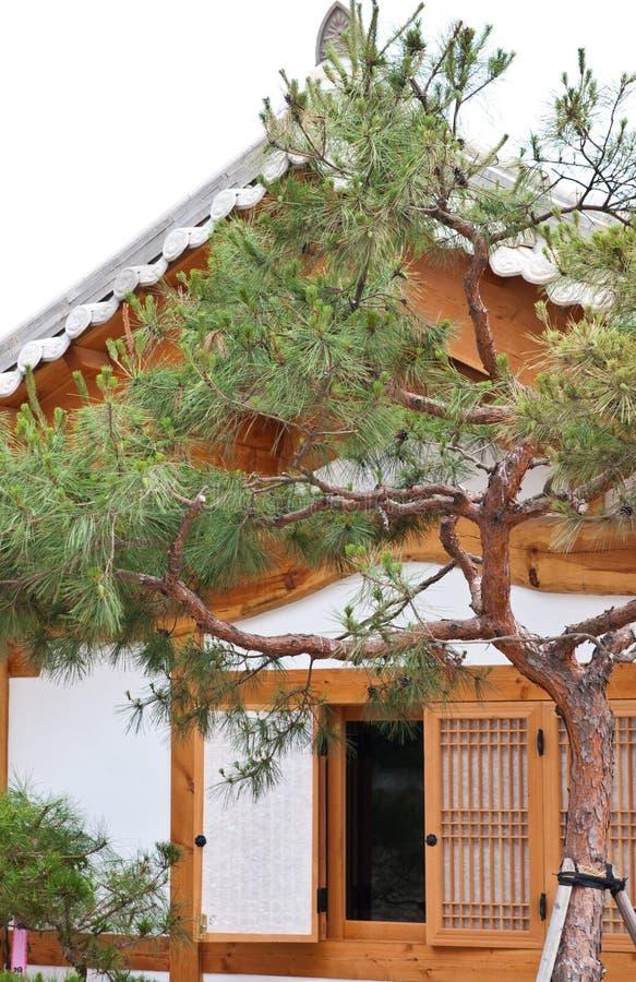 有树的韩国木家 免版税库存照片