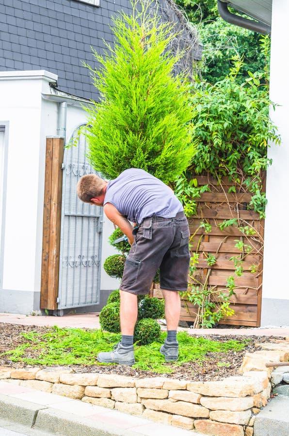 有树篱修剪机的花匠 免版税库存照片