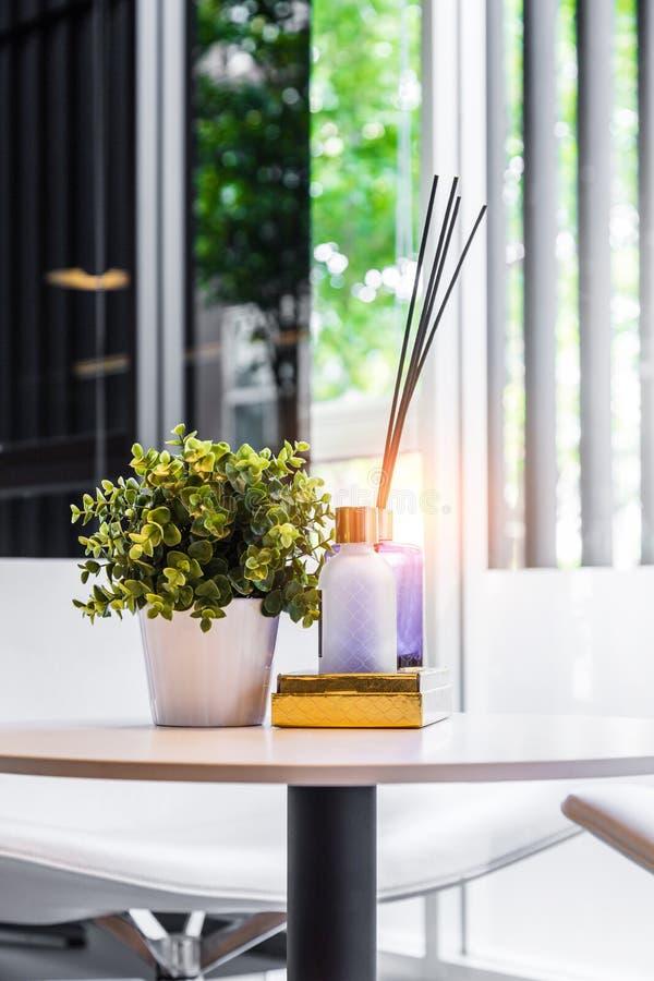 有树罐和芦苇清凉剂的现代工作场所在木tabl 免版税图库摄影