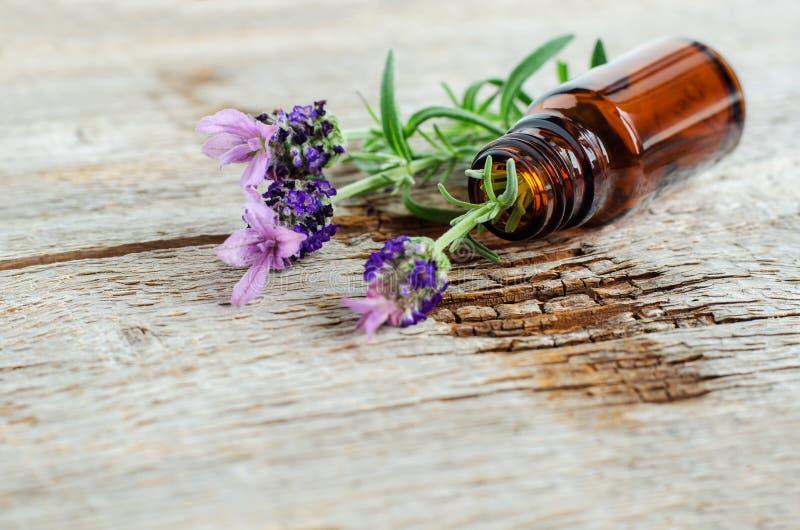 有根本熏衣草油的小瓶 熏衣草属花关闭  芳香疗法、温泉和草药成份 免版税库存照片
