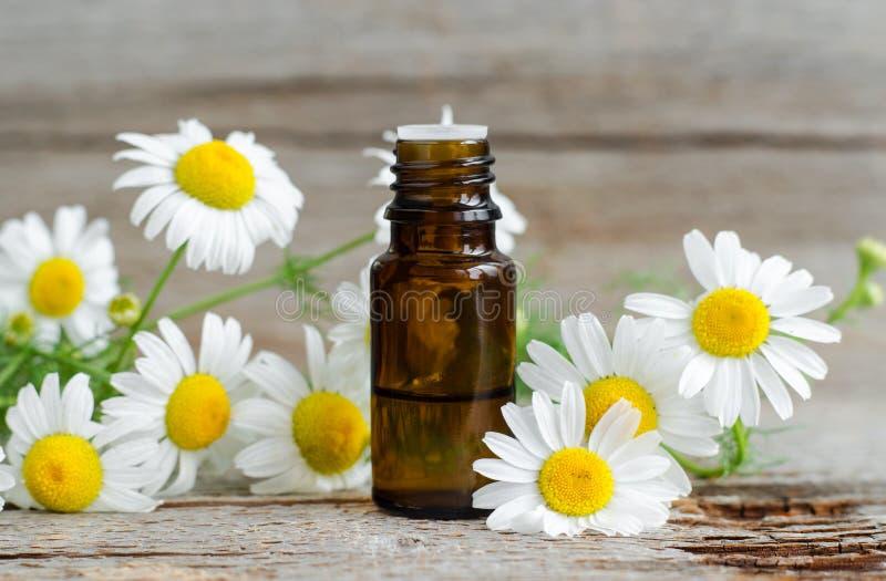 有根本罗马春黄菊油的小玻璃瓶在老木背景 芳香疗法,草药成份 库存图片