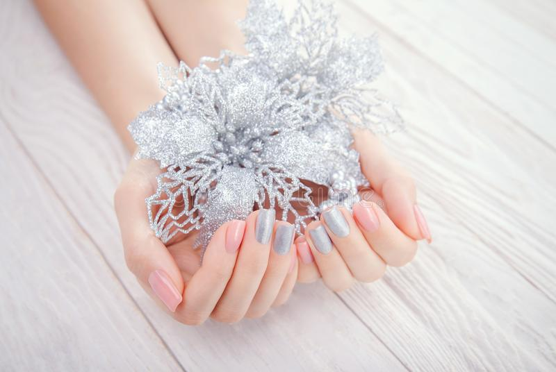 有桃红色和银色修指甲的妇女拿着银色一品红 库存照片