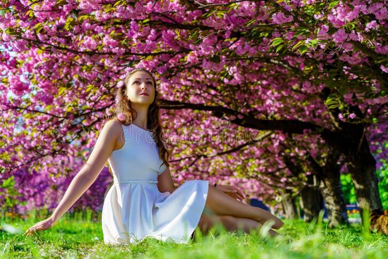 有桃红色花的年轻美女在她的在白色礼服的头发并且微笑坐绿草在开花佐仓树下 免版税库存图片