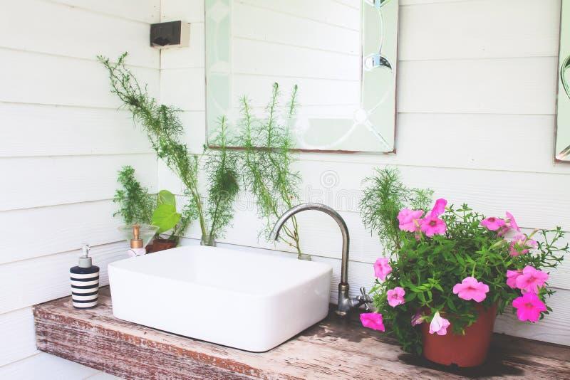 有桃红色花的水盆在家庭菜园,白色和美丽 库存图片