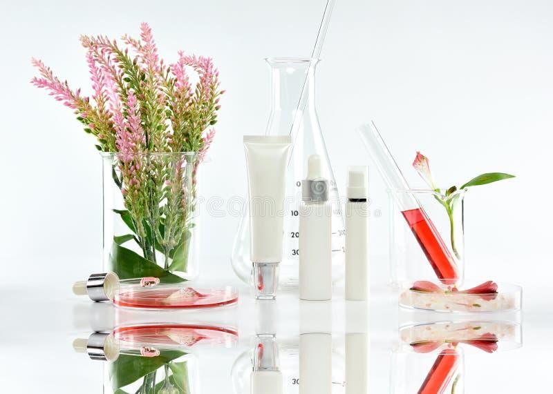 有桃红色草本叶子和科学玻璃器皿的,烙记的大模型的空白的标签包裹化妆瓶容器 免版税库存照片