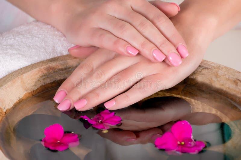 有桃红色钉子的妇女手轻轻地形成胶冻波兰水面上与紫色花 免版税库存照片
