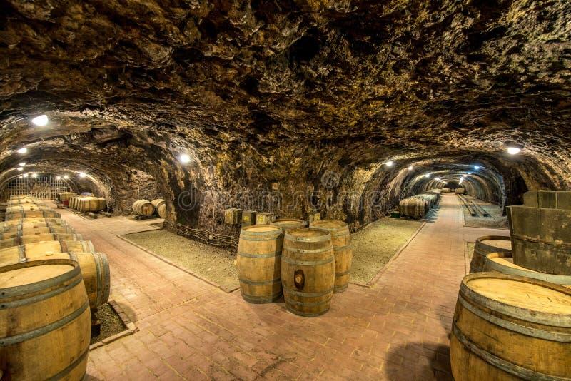 有桶的葡萄酒库 库存图片