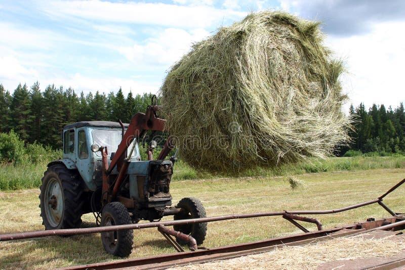 有桶铲车的拖拉机移动在拖车的圆大包干草 库存图片