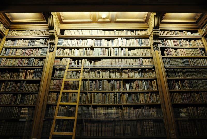 有梯子的图书馆有很多老圣经 免版税库存图片