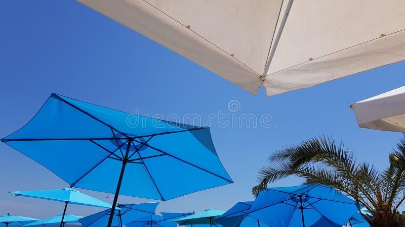 有棕榈树分支的明亮的蓝色沙滩伞 免版税库存照片