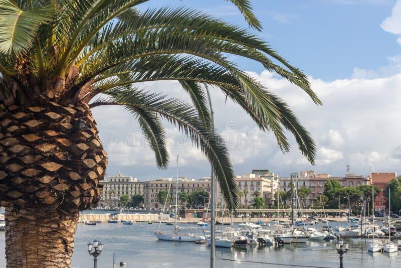 有棕榈树和被停泊的小船的沿海岸区在巴里,意大利 意大利南部的自然风景 与棕榈树的Meditarrenean口岸 免版税库存照片