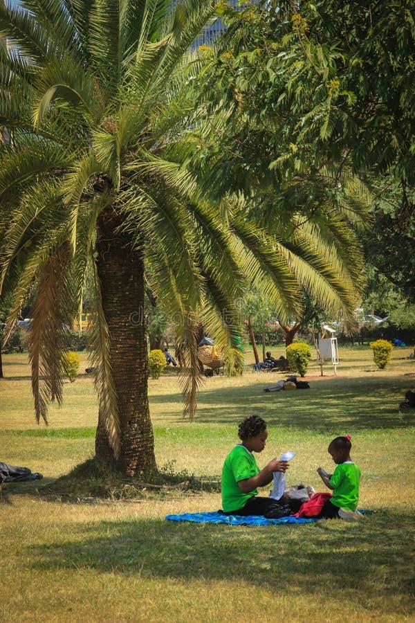 有棕榈树的一个公园在市中心和一个家庭在野餐 库存图片