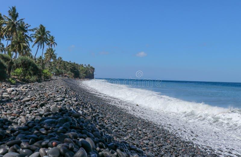 有棕榈树的不尽的处女Pebble海滩和在巴厘岛的热带植被在印度尼西亚 波浪洗涤石海岸 库存照片