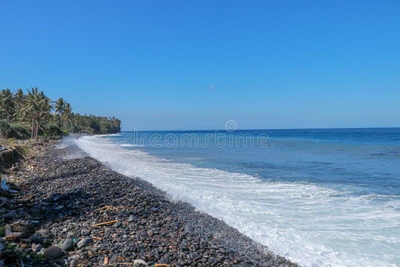 有棕榈树的不尽的处女Pebble海滩和在巴厘岛的热带植被在印度尼西亚 波浪洗涤石海岸 免版税图库摄影