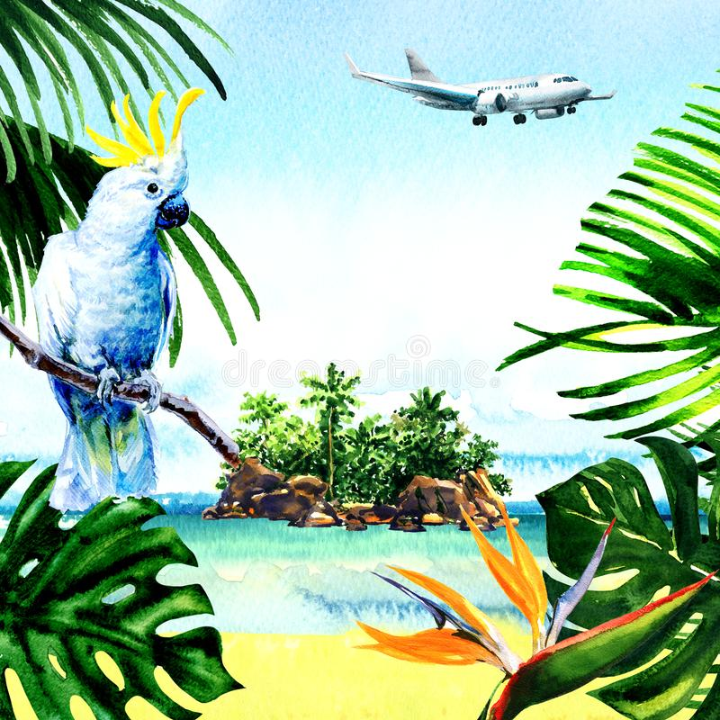 有棕榈树的天堂海岛,通过绿色热带叶子和花与鹦鹉,飞行的飞机在天空,夏天 皇族释放例证