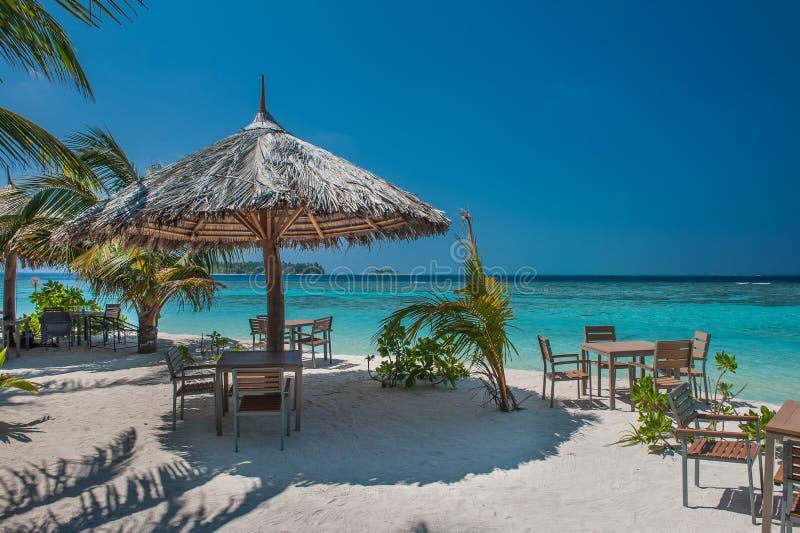 有棕榈树的热带海岛和惊人的充满活力的海滩在马尔代夫 遮阳伞在海热带马尔代夫浪漫环礁海岛 图库摄影
