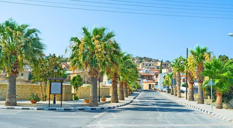 有棕榈的街道 免版税库存照片