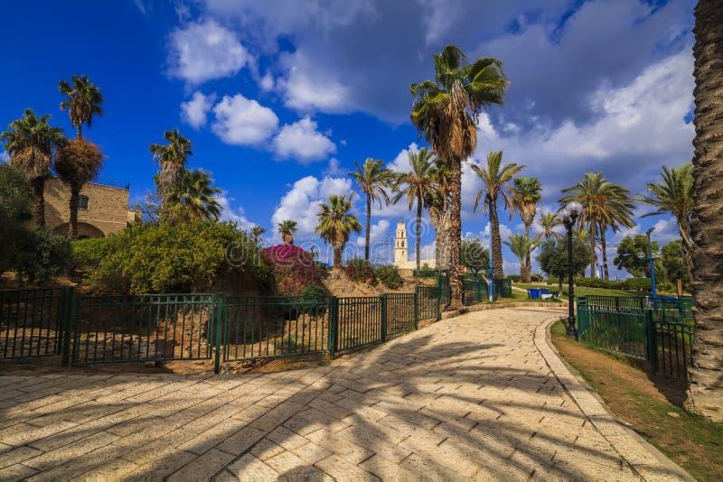 有棕榈胡同的美好的散步 贾法角,特拉维夫 库存图片