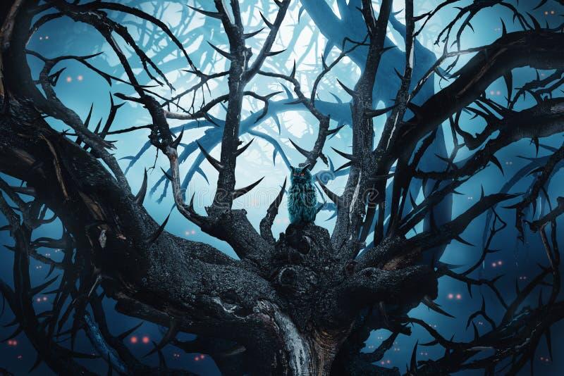 有棘手的树和红色眼睛的黑暗的森林图片