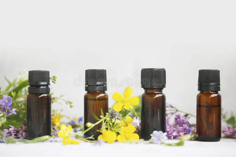 有植物和花的芳香疗法草本精油瓶 库存照片