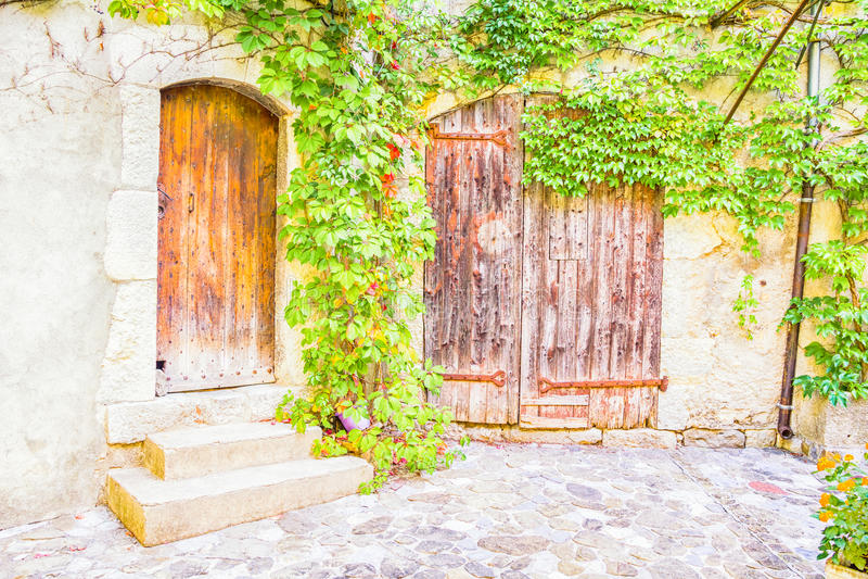 有植物的中世纪房子 库存图片