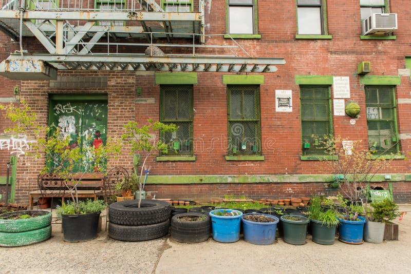 有植物的被放弃的房子在它前面 库存照片