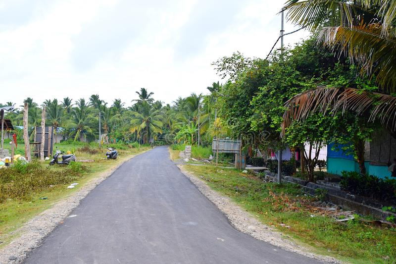 有椰子的沥青混凝土路在印度乡下-绿色镇风景-尼尔海岛,安达曼尼科巴 库存图片