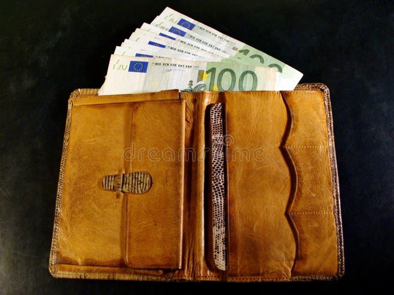 有欧元的被打开的蛇皮革钱包 丰厚的概念 免版税库存照片