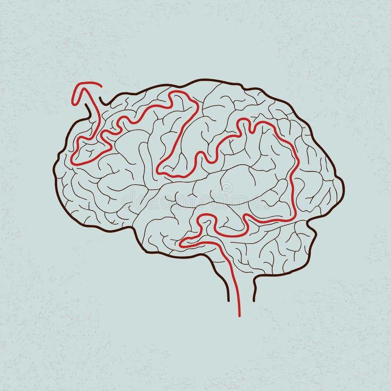 有正确道路的脑子迷宫 向量例证