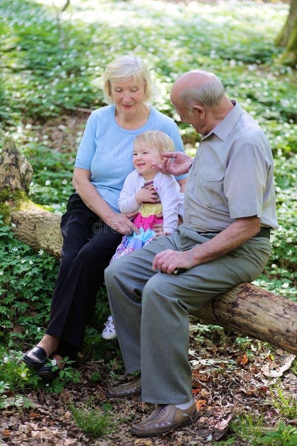 有步行在森林里的孙的祖父母 免版税库存照片