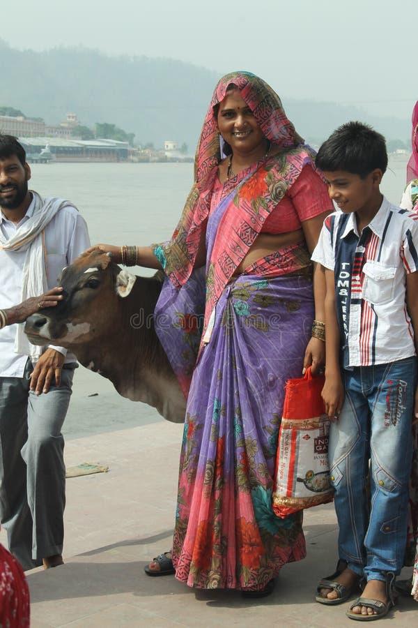 有母牛的印地安妇女 库存图片