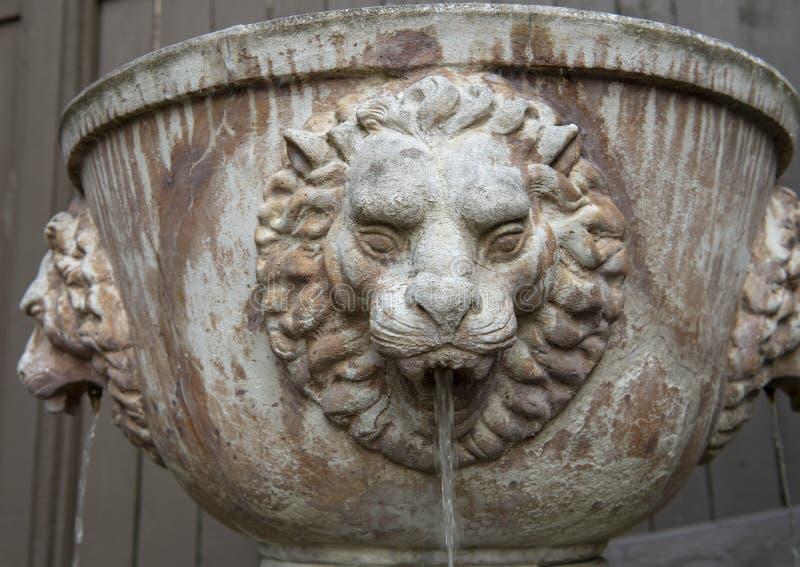 有水小河的狮子喷泉从狮子` s嘴,西雅图华盛顿 库存图片