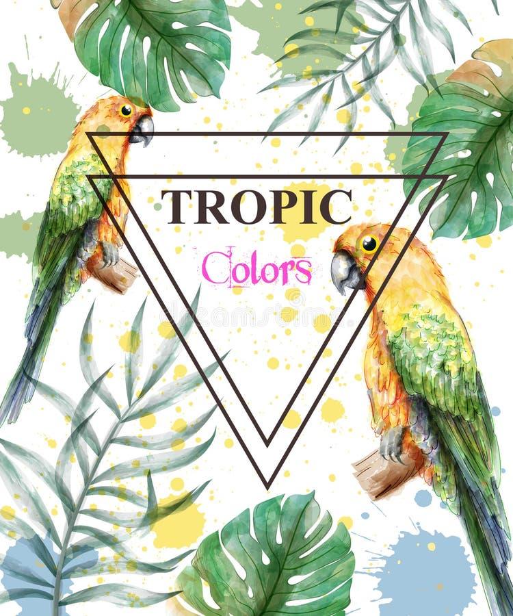 有水彩鹦鹉的热带天堂和棕榈叶拟订背景传染媒介 库存例证