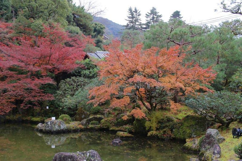 有池塘、岩石、石渣和青苔的禅宗庭院 免版税库存图片