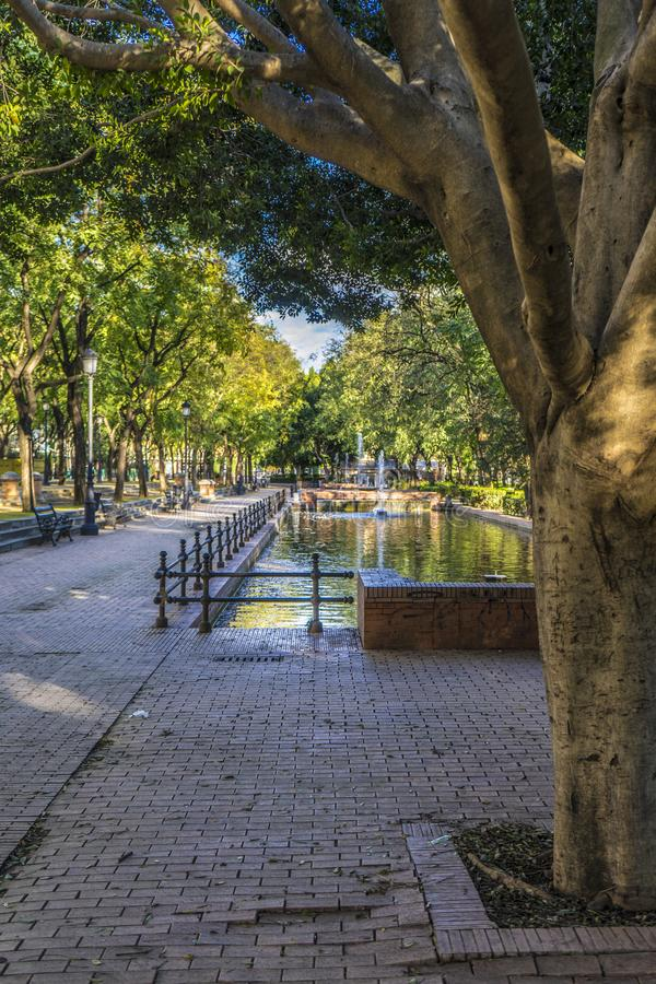 有池塘的公园 免版税图库摄影