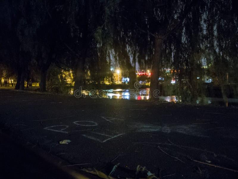 有池塘的夜公园 与的风景发光的灯笼和树枝 免版税库存图片