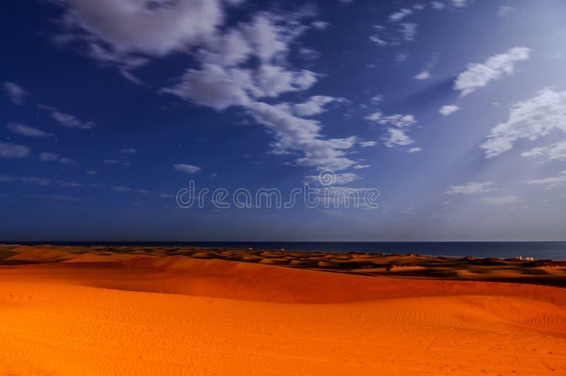 有沙丘的沙漠在大加那利岛西班牙 免版税库存图片