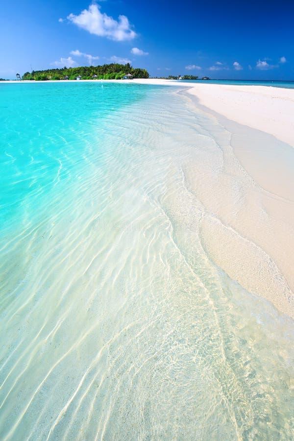 有沙滩与棕榈树和tourquise净水的热带海岛在马尔代夫 库存图片