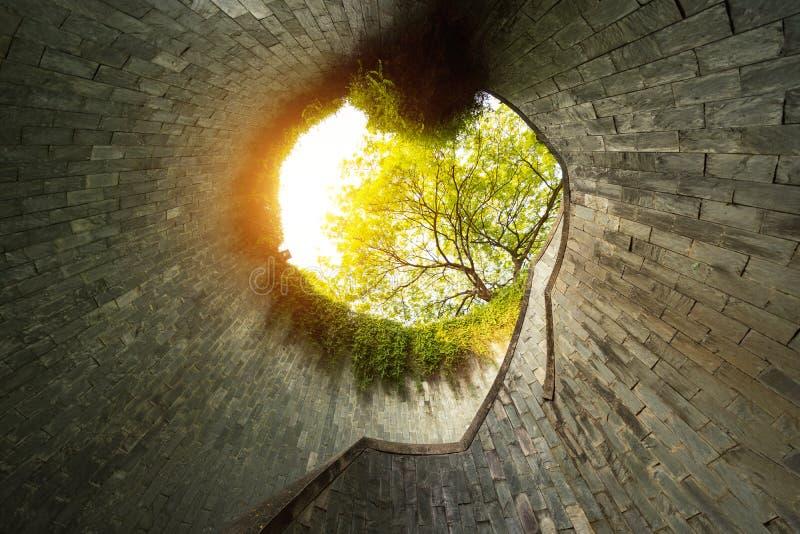 有没人的堡垒装于罐中的公园 有树的自然隧道 库存图片