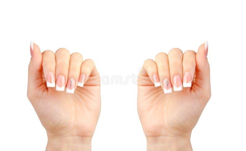 有法式修剪的美丽的妇女的手在白色 库存照片