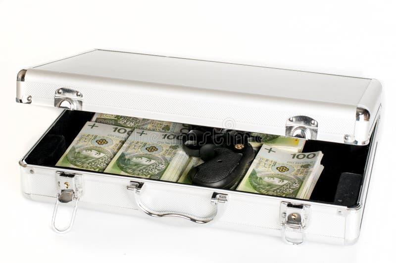 波兰金钱 免版税库存图片