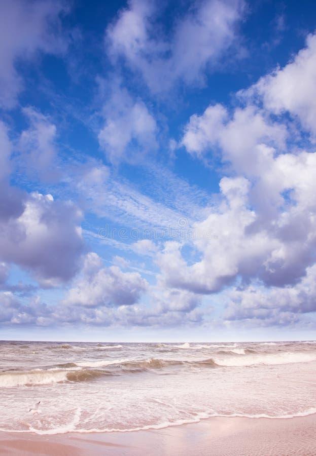 有波浪和清楚的天空蔚蓝的蓝色海洋 免版税库存图片