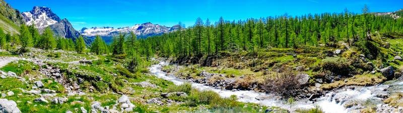 有洪流的山全景有很多水用夏天Alpe开发商 免版税库存照片