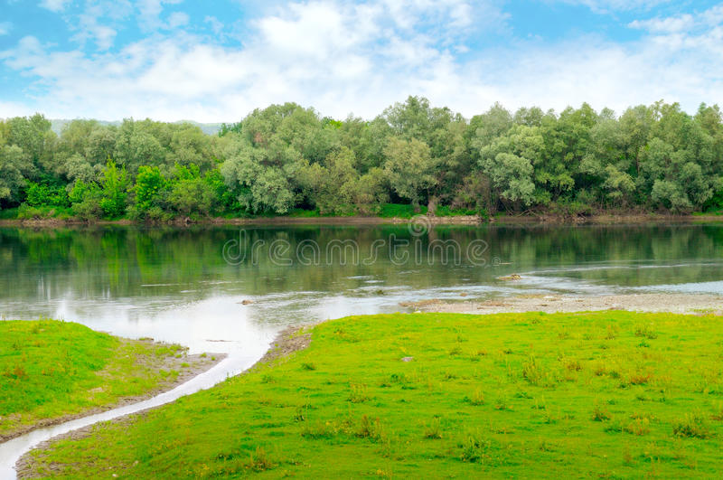 有流入和洪泛区森林的简单的河 库存图片