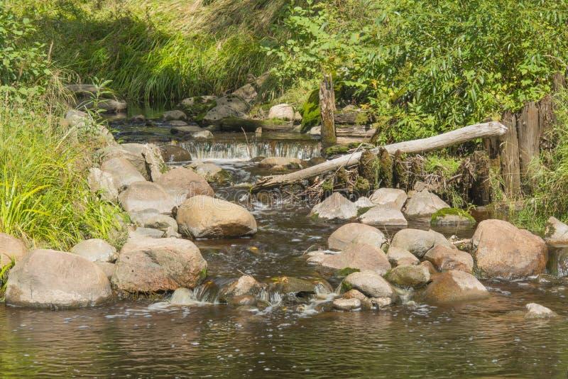有浅滩、石头和射线的小河 库存照片