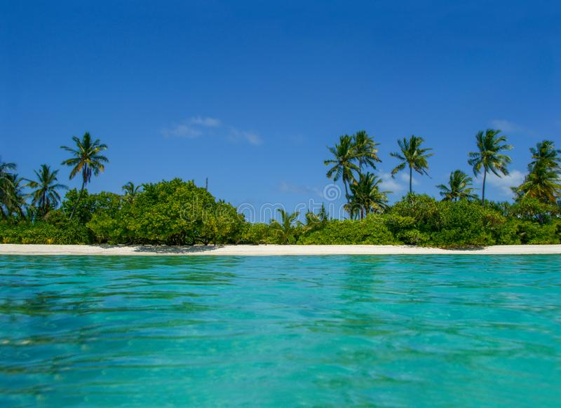 有海滩、海洋和可可椰子树的美丽的热带马尔代夫海岛在自然假日假期背景的蓝天 库存图片